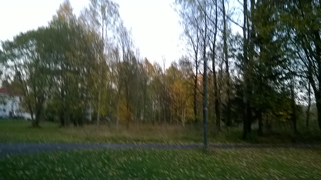 WP_20141008_154