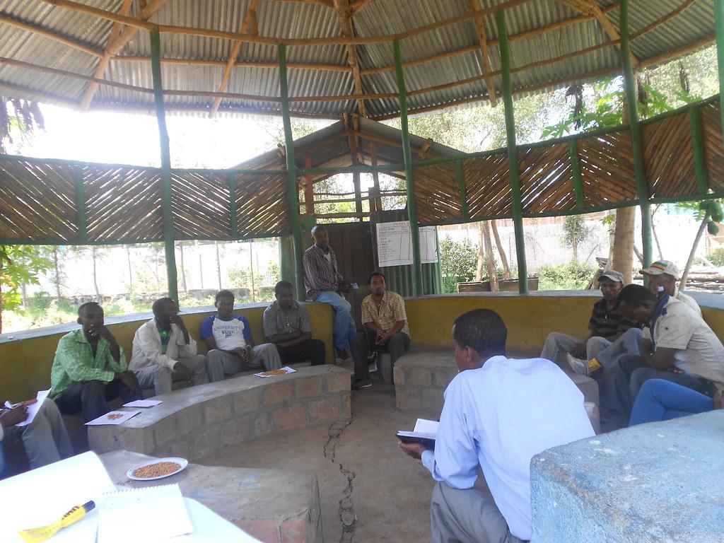 Innovation platform meeting among producers, traders, marketing cooperatives and extension staffs in Mirab Abaya district of Gamogofa zone  (Photo:ILRI\LIVES)