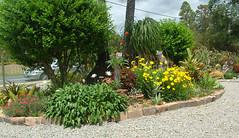1 Spring garden 2014