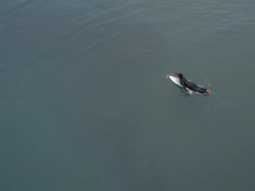 surfing (2)