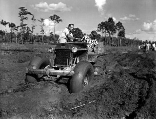 Naples' swamp buggy race