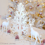 Enchanted Forest Christmas