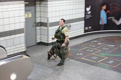 Image of Deputy with German Shepard