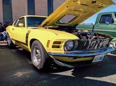 automobile, automotive exterior, boss 302 mustang, wheel, vehicle, automotive design, first generation ford mustang, boss 429, bumper, ford, antique car, land vehicle, muscle car, sports car, motor vehicle,