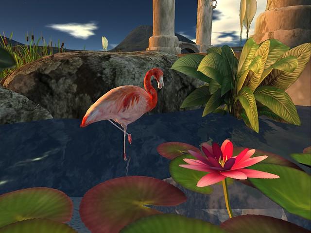 Ghazel -Flamingo at Rumi's Pond Pagoda II