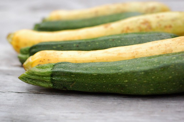 Summer squash by Eve Fox, The Garden of Eating, copyright 2014