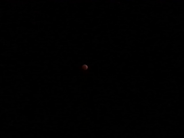 Back Yard Eclipsed Blood Moon