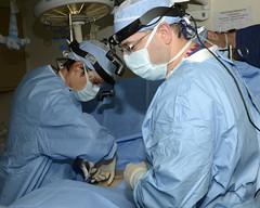 arm(1.0), surgery(1.0), surgeon(1.0), medical(1.0), person(1.0), organ(1.0),