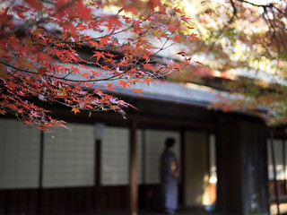 Kuva 月華殿. house building japan autumnleaves 日本 yokohama 横浜