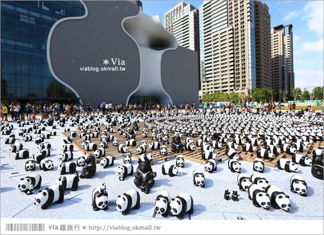 【台中】大都會歌劇院~可愛紙熊貓大軍來襲!台中七期的新亮點!3