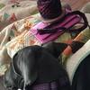 Starting a #honeycowl with Malabrigo yarn with my girl Indigo snuggling up to keep me warm :) #bliss #knitting #addi #malabrigo #indigo #greatdane