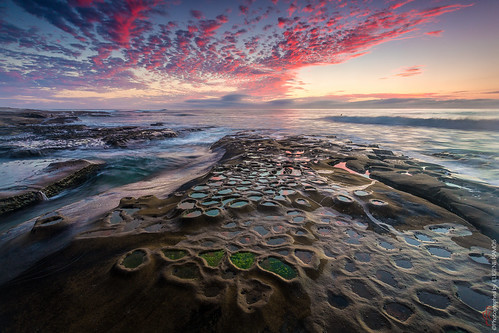 california seascape beach landscape sandiego lajolla southerncalifornia hospitalreefs