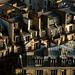 Toits de Paris by bravojacques