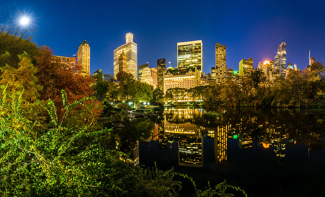 Reflection in the central park