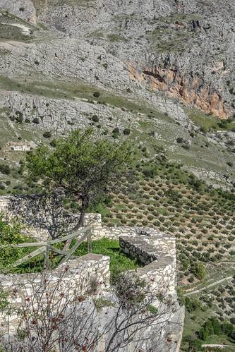 Andalousie-0979.jpg