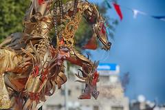 Limassol Carnival  (256)