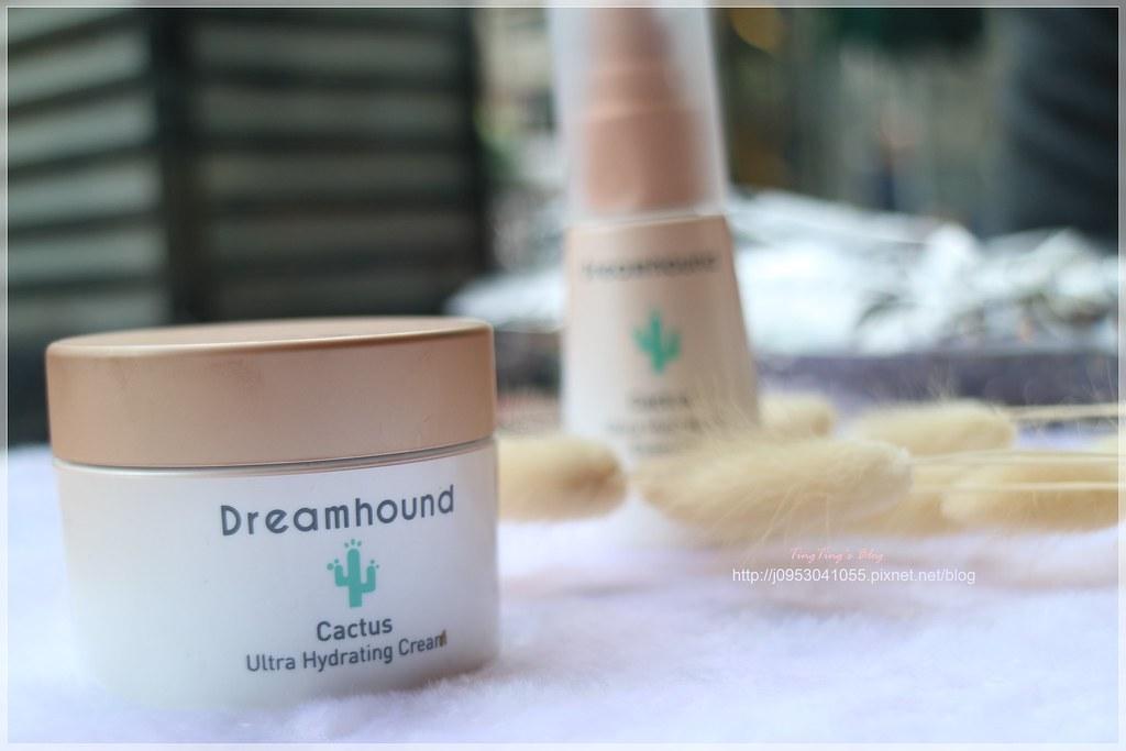 Dreamhound仙人掌活水保濕 (11)