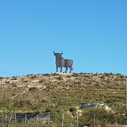 El Toro de España... #madrid #españa #inmigrantesenmadrid #venezolanosenmadrid #venezolanosmadrid #vivoenmadrid #venezuela #spain #venezolanosenespaña