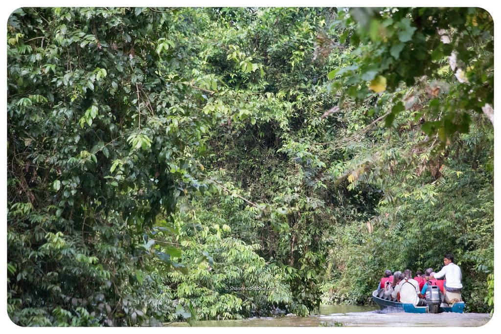 Borneo-20170411-IMG_7542