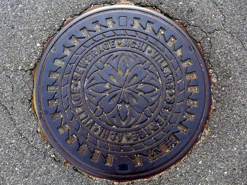 Achi Nagano, manhole cover (長野県阿智村のマンホール)