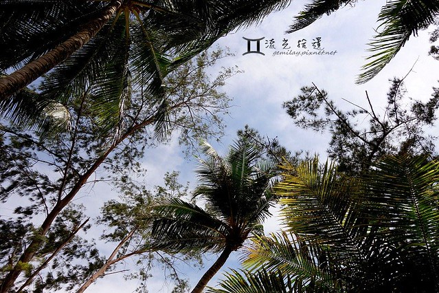 0906 Sabah (14)