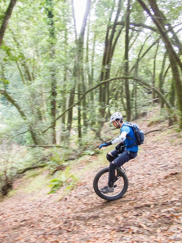 Josh in the woods