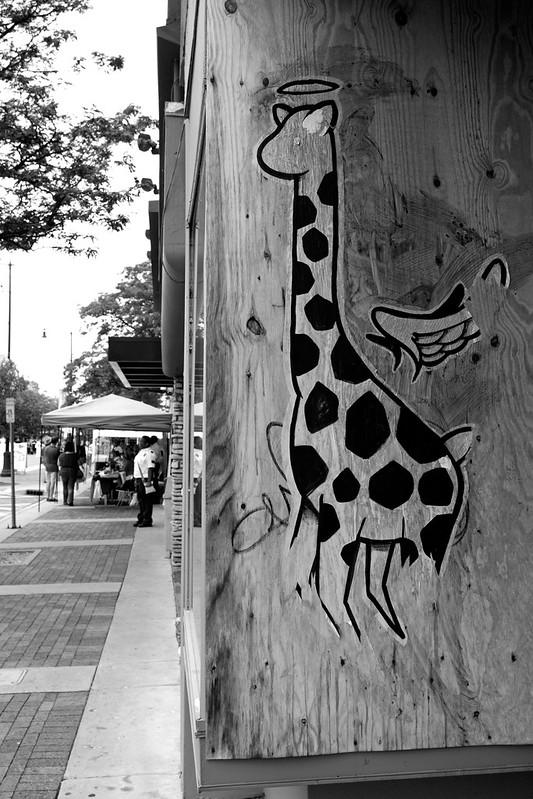 Weird Giraffe