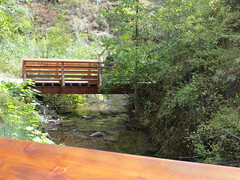 One of the trail bridges