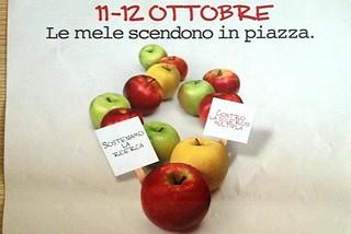 Noicattaro. Campagna AISM front