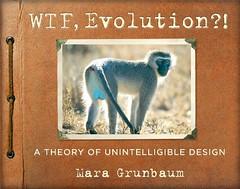 WTF Evolution?!