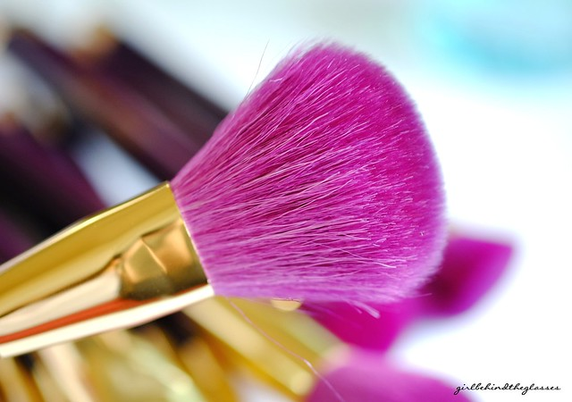 Sonia Kashuk 15th Anniversary Powder Brush
