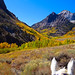 Eastern Sierra Weekend, October 2014 by HorsePoor4Ever