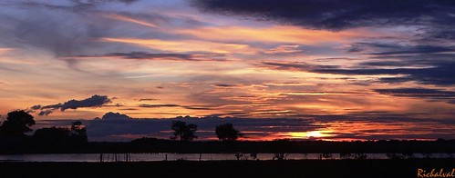 sunset paisajes naturaleza sun sol colors sunshine clouds sunrise landscape atardecer venezuela natura colores cielo nubes llanos tarde nwn apure llanosvenezolanos llanosdevenezuela llanosdeapure llanosapureños