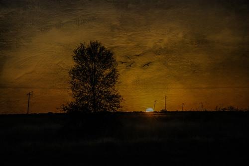 sunset texture landscape australia queensland nikond610 barcaldinecountry