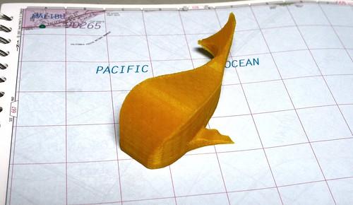 3D Printed Big Fish