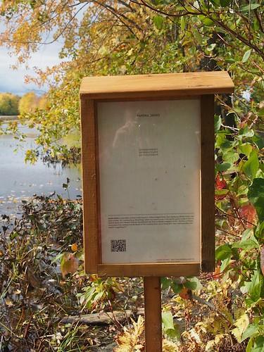Sandra Ridley's poem on Turtle Trail