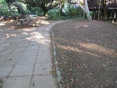 木屋區植草完,澆過水後。
