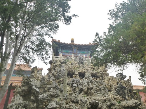 Beijing-Cité Interdite-Jardin Impérial (13)