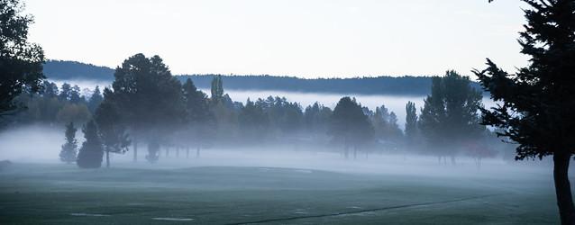 Munds Park, Az in Fog