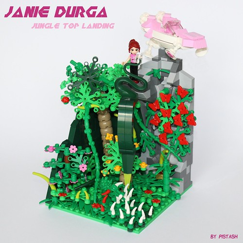 Janie Durga : Jungle top landing