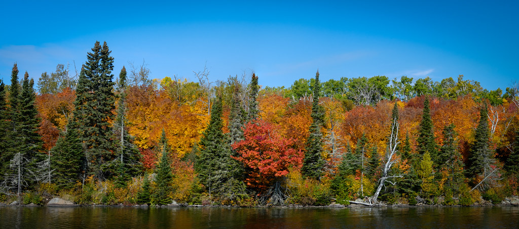 Minnesota Northshore Fall