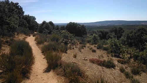 Día 3 - Camino de Santiago