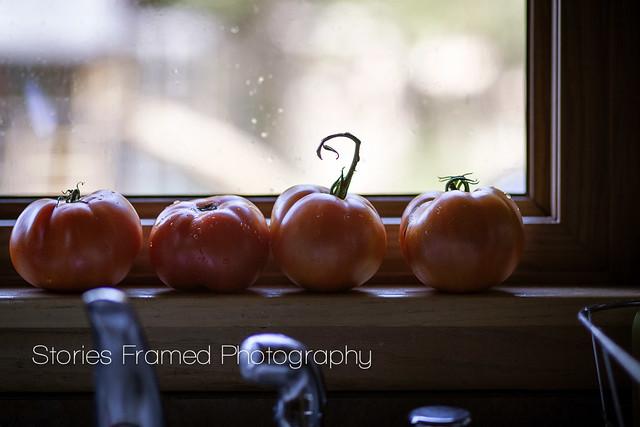 235.365 | tomato, tomato.