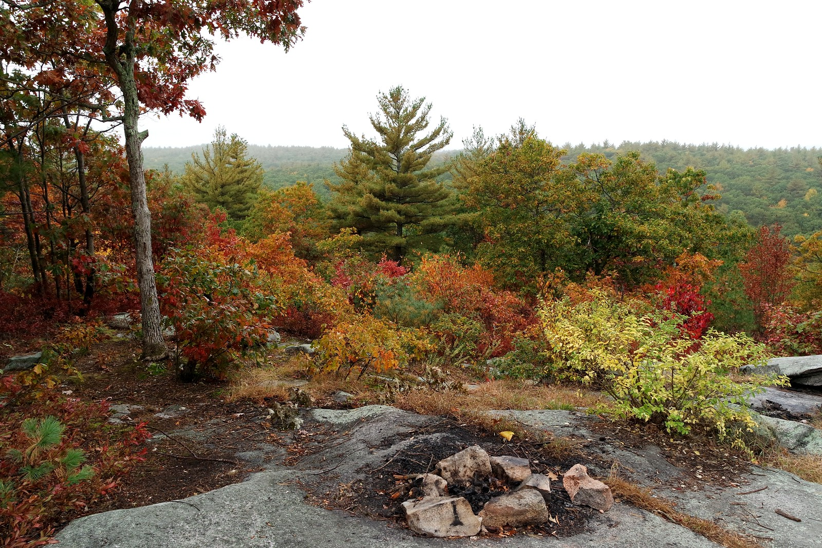 Beautiful Fall Colors on Top of Peppercorn Hill