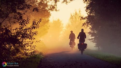 morning autumn sun mist fall bike silhouette misty fog sunrise gold golden glow foggy sunny biking glowing bikelane goldenhour