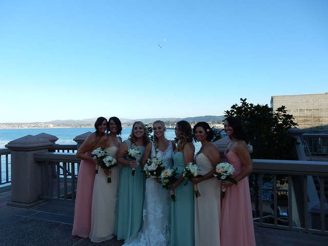 Sister's Bridal Party