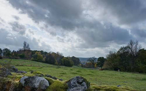 autumn sky field clouds landscape afternoon cows mark 28mm pasture hdr västragötaland västergötland sjuhärad 5exposurehdr hyssna