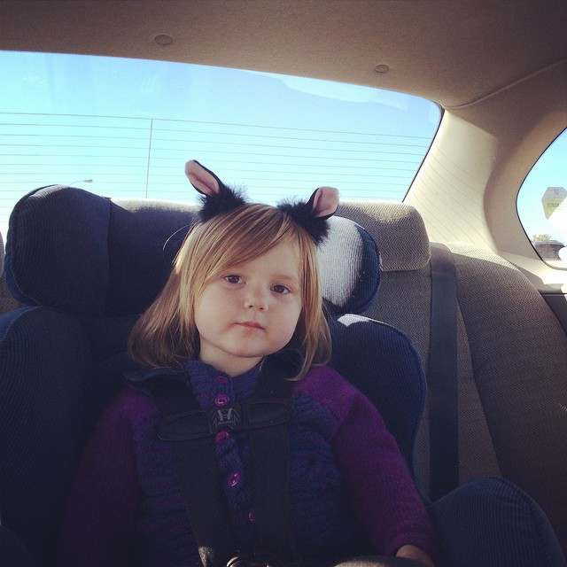 "Went to Joann to get fleece to make her ""super kitty"" cape, and found clip-on cat ears. Perfect!"