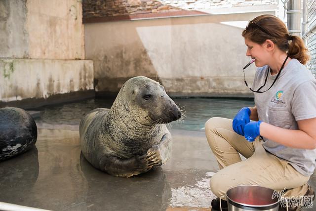 Inside the Artist Studio National Zoo