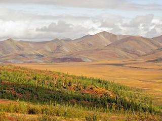 Arctic Circle View